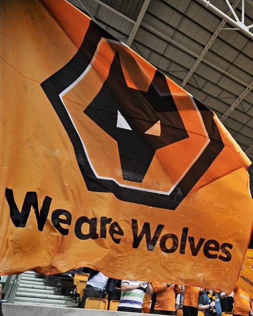 We are Wolves flag