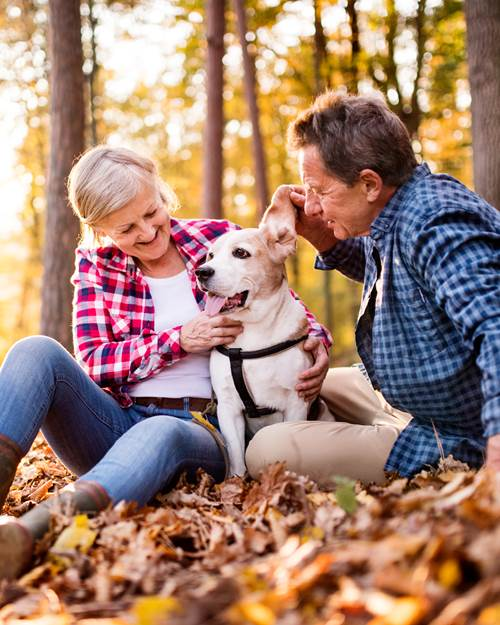 Old couple with dog
