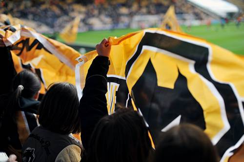 Fans holding flag at Wolves game